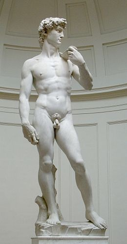 260px-David_von_Michelangelo[1].jpg